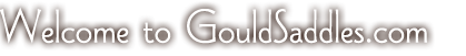 Welcome to GouldSaddles.com